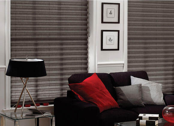 pleated gray stylish blinds